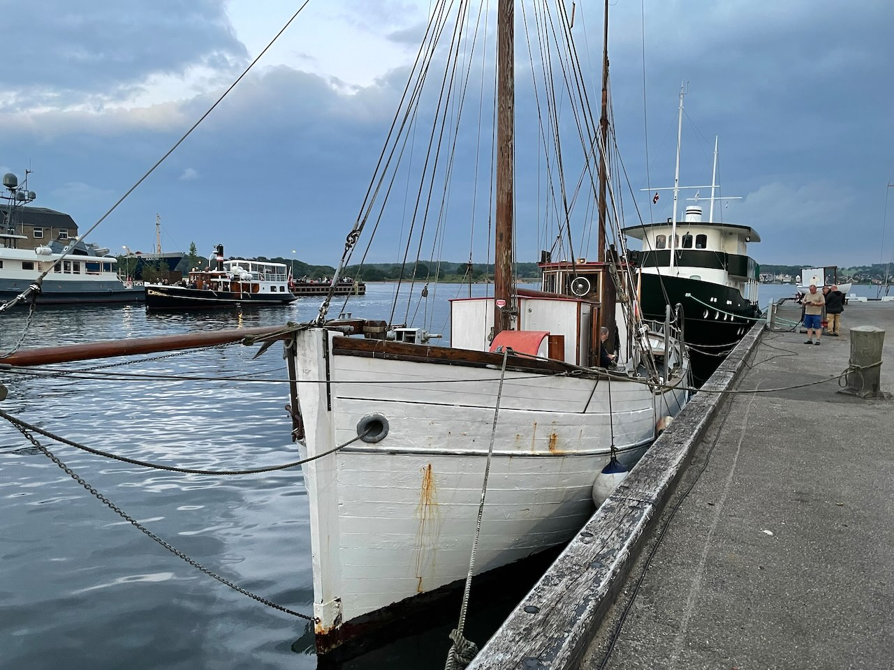 Kivioq i Svendborg Havn 2021