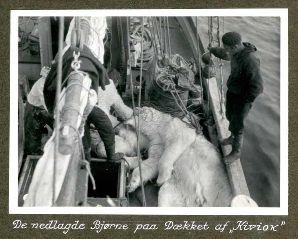 Kivioq foto fra Knud Rasmussen Arkivet - 7
