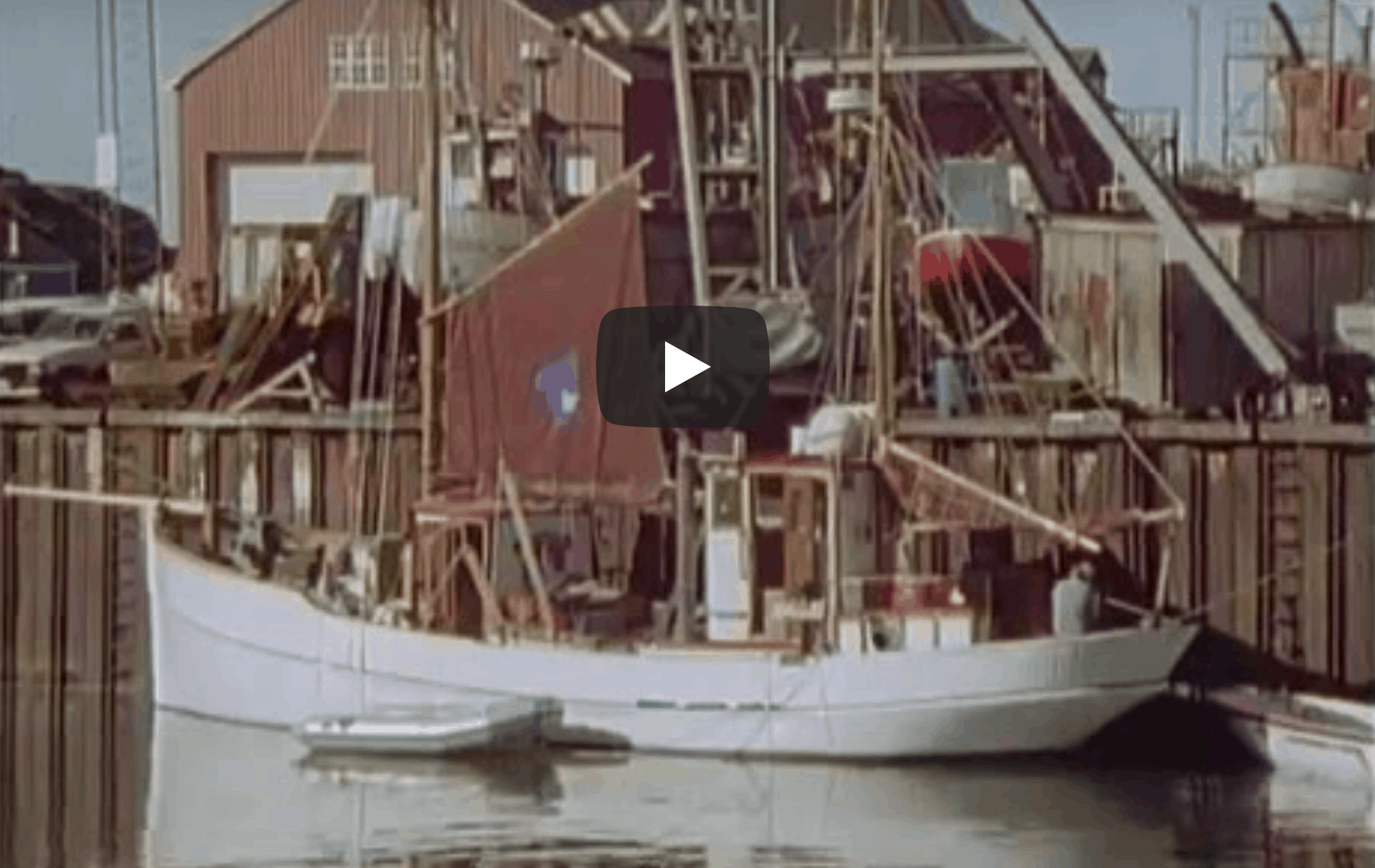 Kivioq ved kaj 1991, formodet i Flensburg